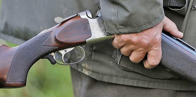 Psp leva licenciamento de armas a todo o distrito jornal for Uso e porte de arma